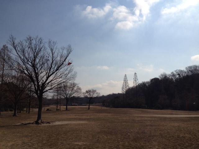 メタセコイア公園.jpg